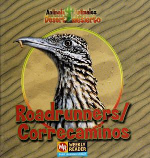 Cover of: Roadrunners = | JoAnn Early Macken